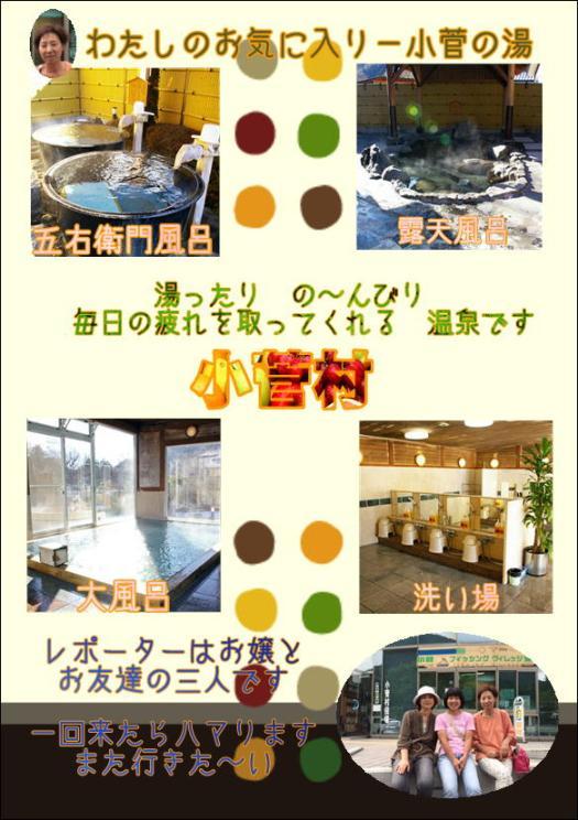 小菅村-小菅の湯.JPG