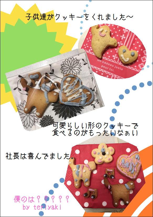 テリヤキブログ-クッキー