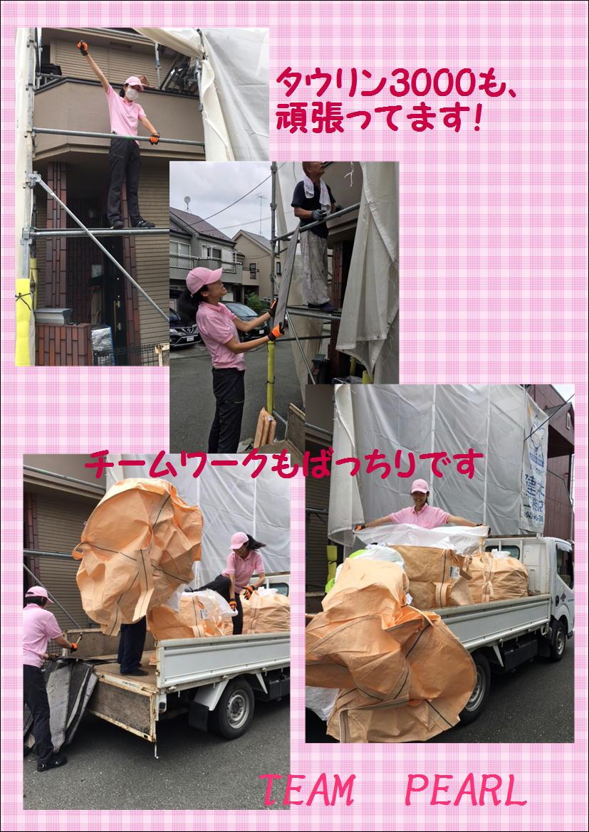 チームパール 現場日記 為則邸②